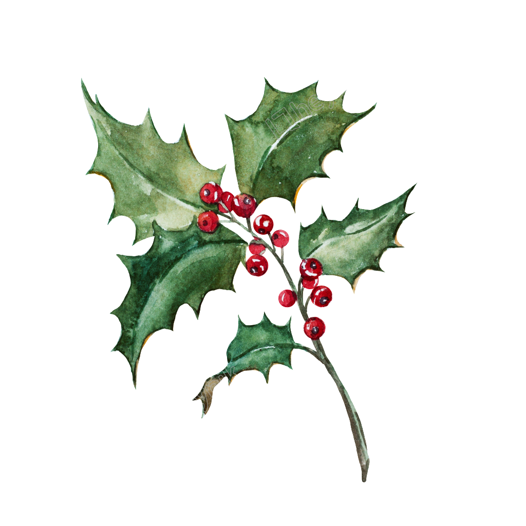 Christmas Leaf Png.Pin By Bgilbert On Watercolors In 2019 Green Leaves Plant