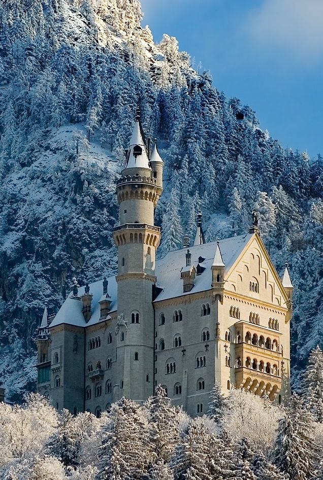 Schloss Neuschwanstein Im Winter With Images Places Ive Been Around The Worlds House Styles