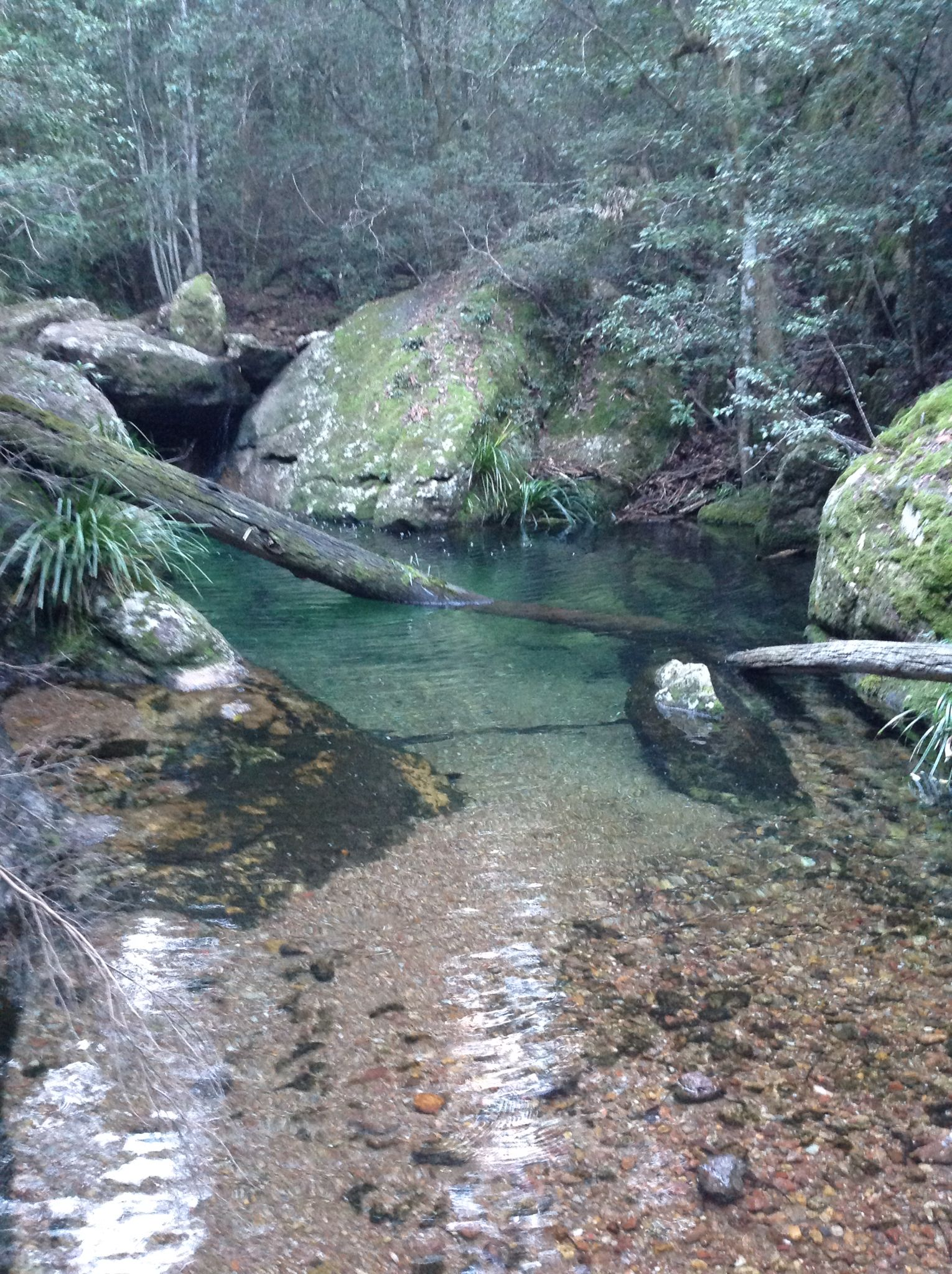 Bago Bluff National Park! - YouTube