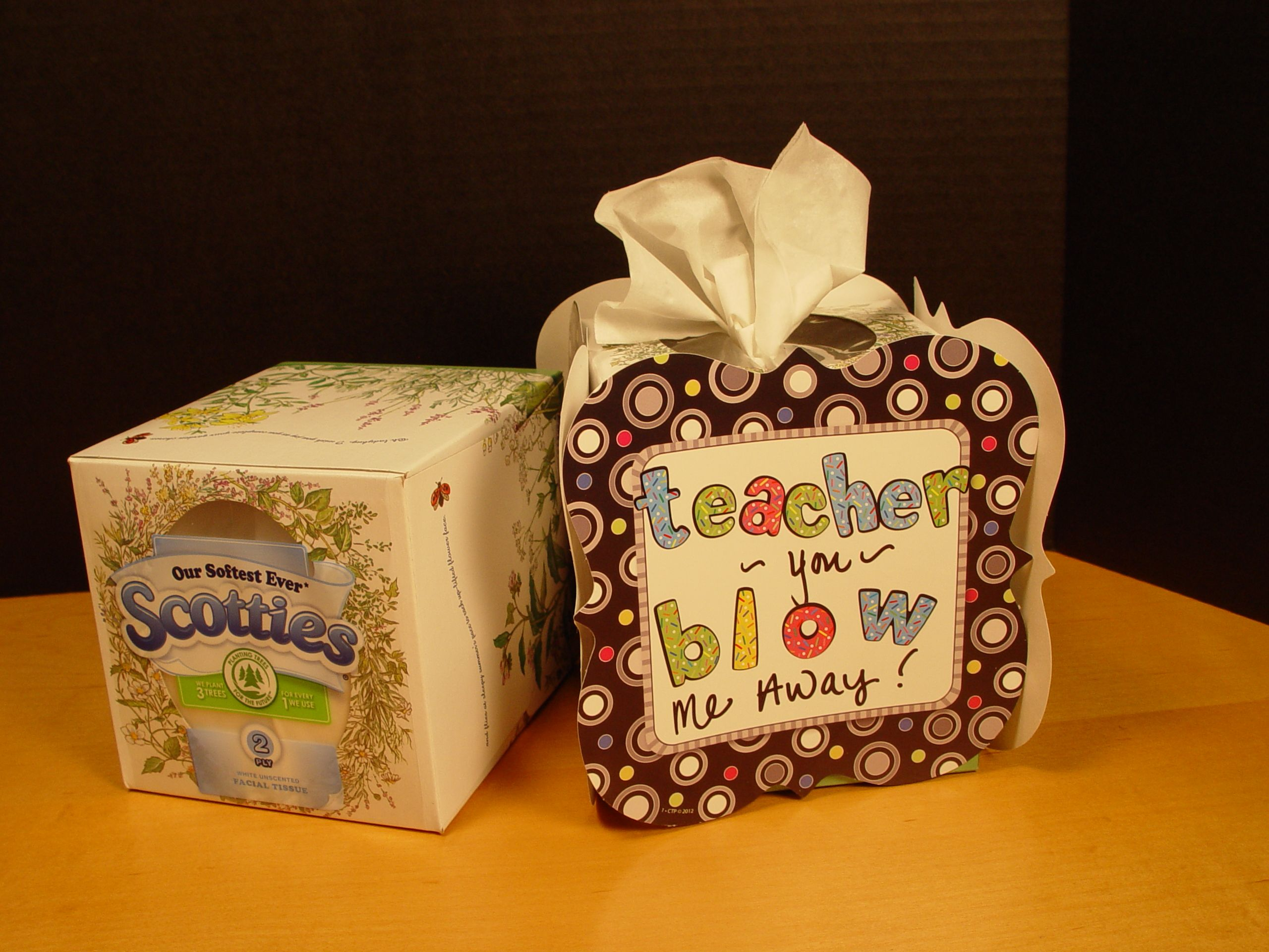 What 39 s something all teachers need tissues here 39 s how to for Useful gifts to make