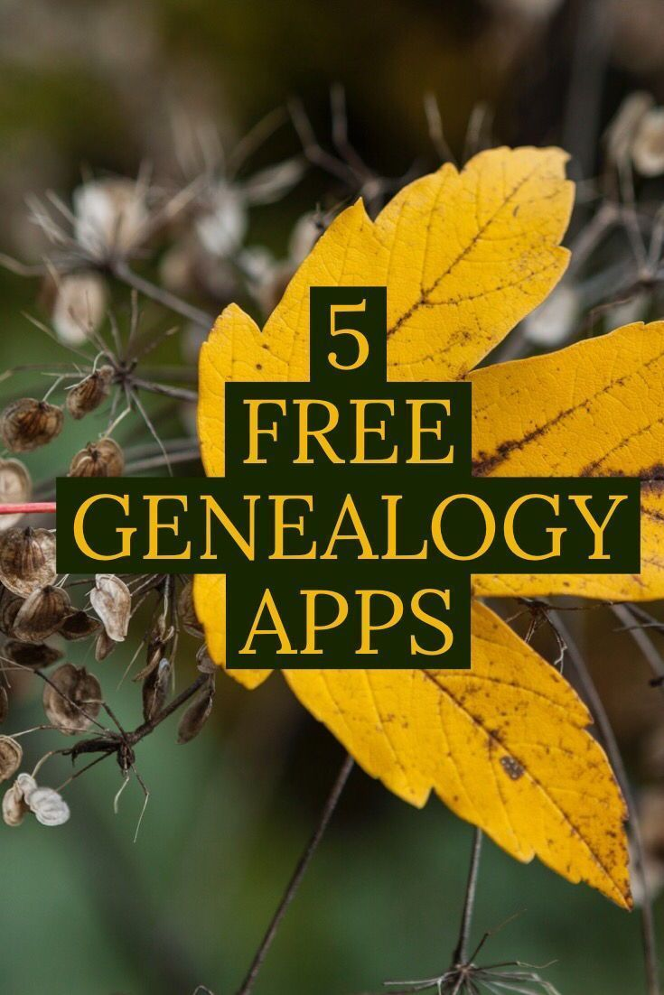 Family Tree Apps - Powerhouses for On-the-Go Genealogy - #genealogy