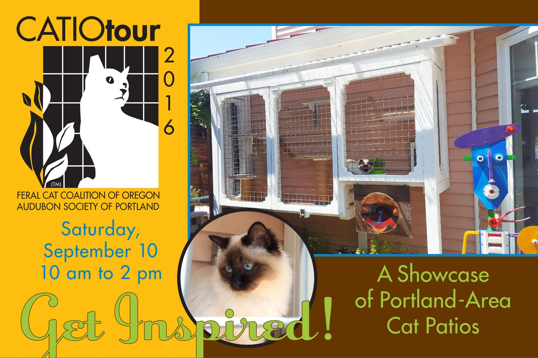 Catio Tour Feral cats, Cat patio, Cats