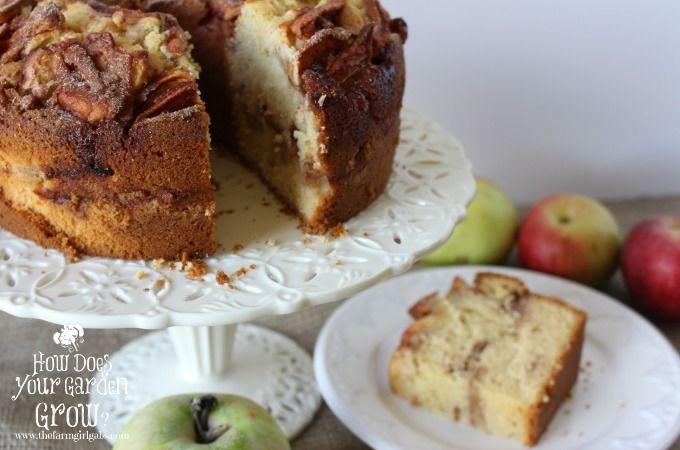 The Best Jewish Apple Cake Recipe Jewish Apple Cakes Apple Recipes Apple Cake Recipes