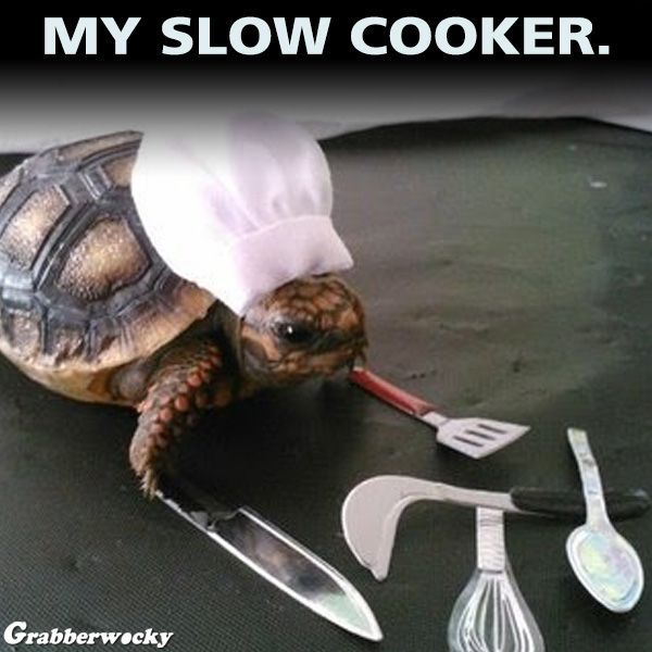 9a0ab3bbb3b19e037d76bd6d0d091651 my slow cooker memes pinterest memes