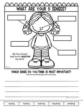 First Grade Science - MODG Books