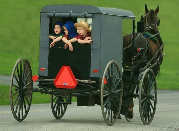 Amish Country Tour by Randy Matthews | Amish country, Amish community, Amish  country pa