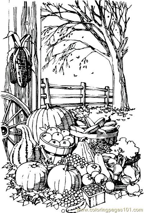 fall coloring pages printable | Coloring Pages Fall Harvest (Natural ...