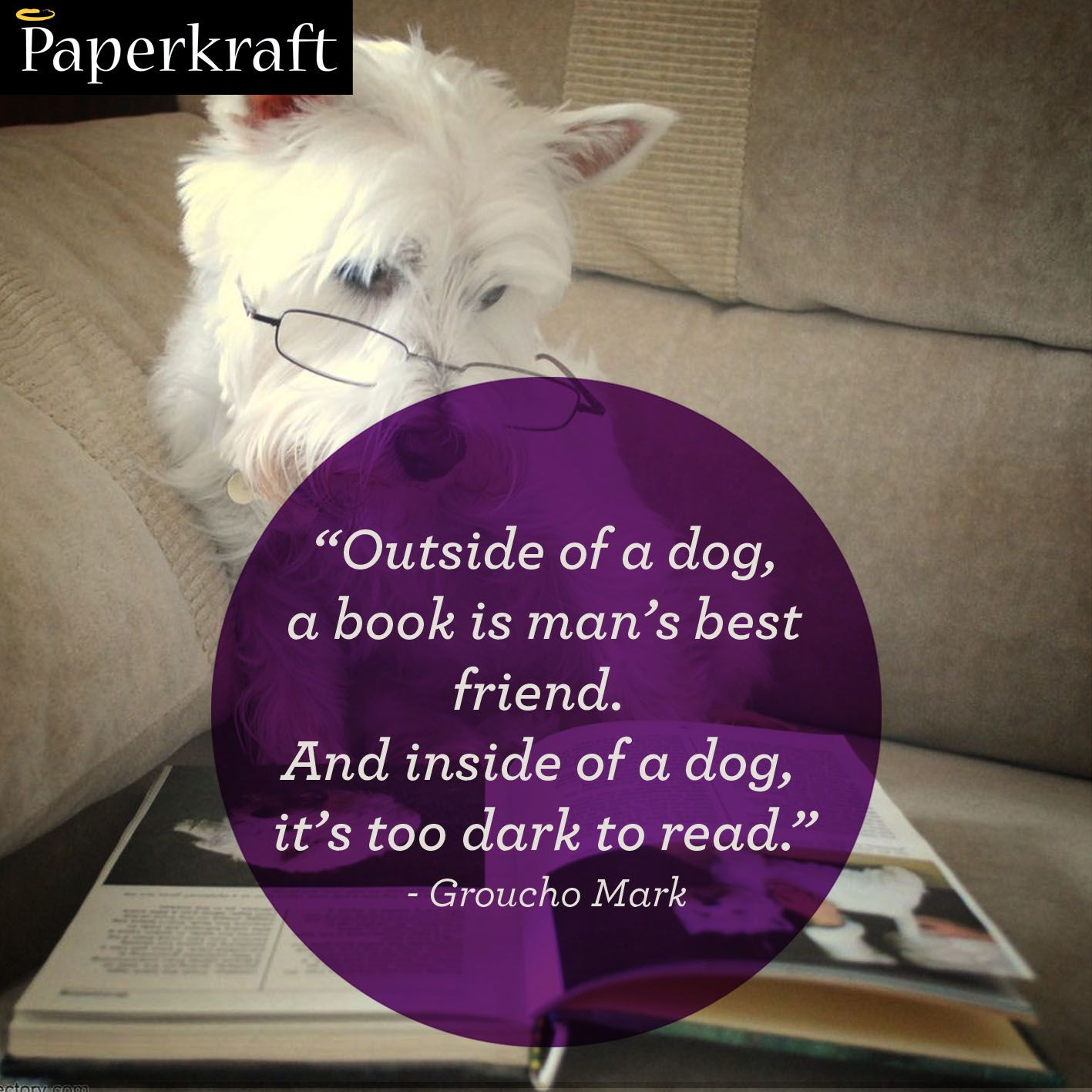 Our Best Friends Dogs & Books dogs books quotes