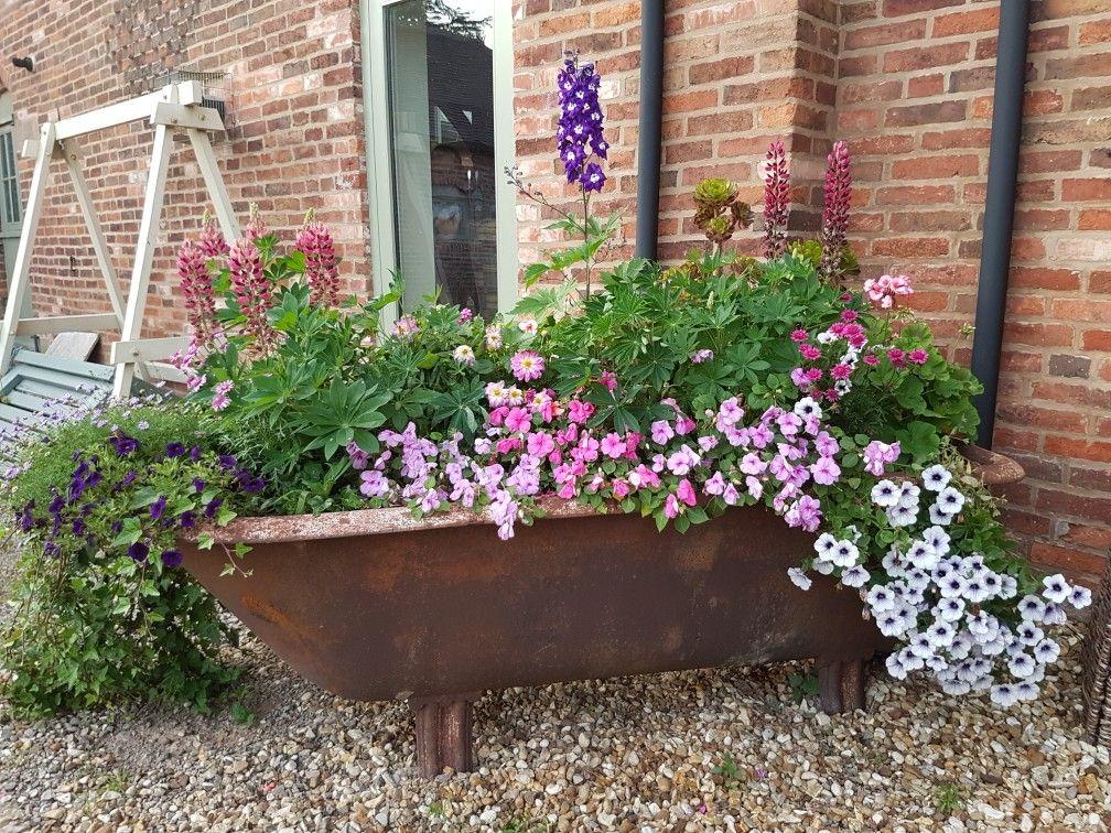 Cast iron bath tub makes a great flower tub cast iron