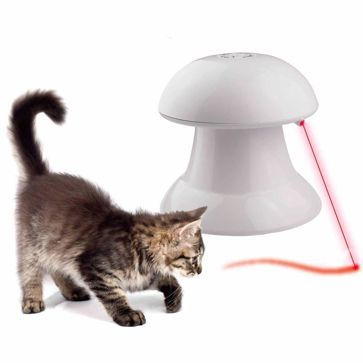Food Dispensing Item For Cats Aus