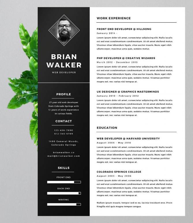 Eye Catching Resume Templates Use One Of These Unique Versatile Resume Templates To Make A Big