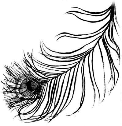 Women Bald eagle feather tattoo -Tattoo 4 Me