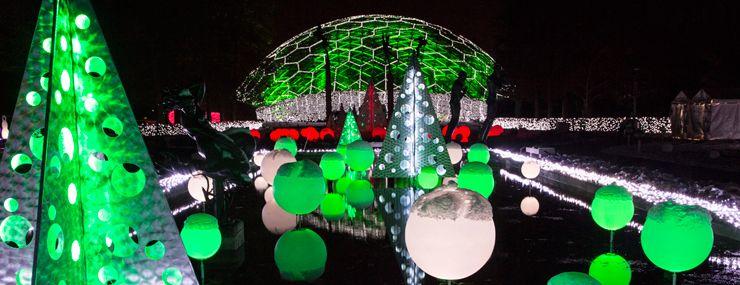 9a0d648cc4227f2e6d176d9293db05bf - Light Show Botanical Gardens St Louis