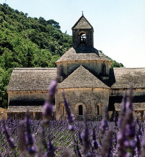 The scent of lavender  surrounding the 12th century Abbye de Senaque in the summer sun.  Where do the jongleurs sing?