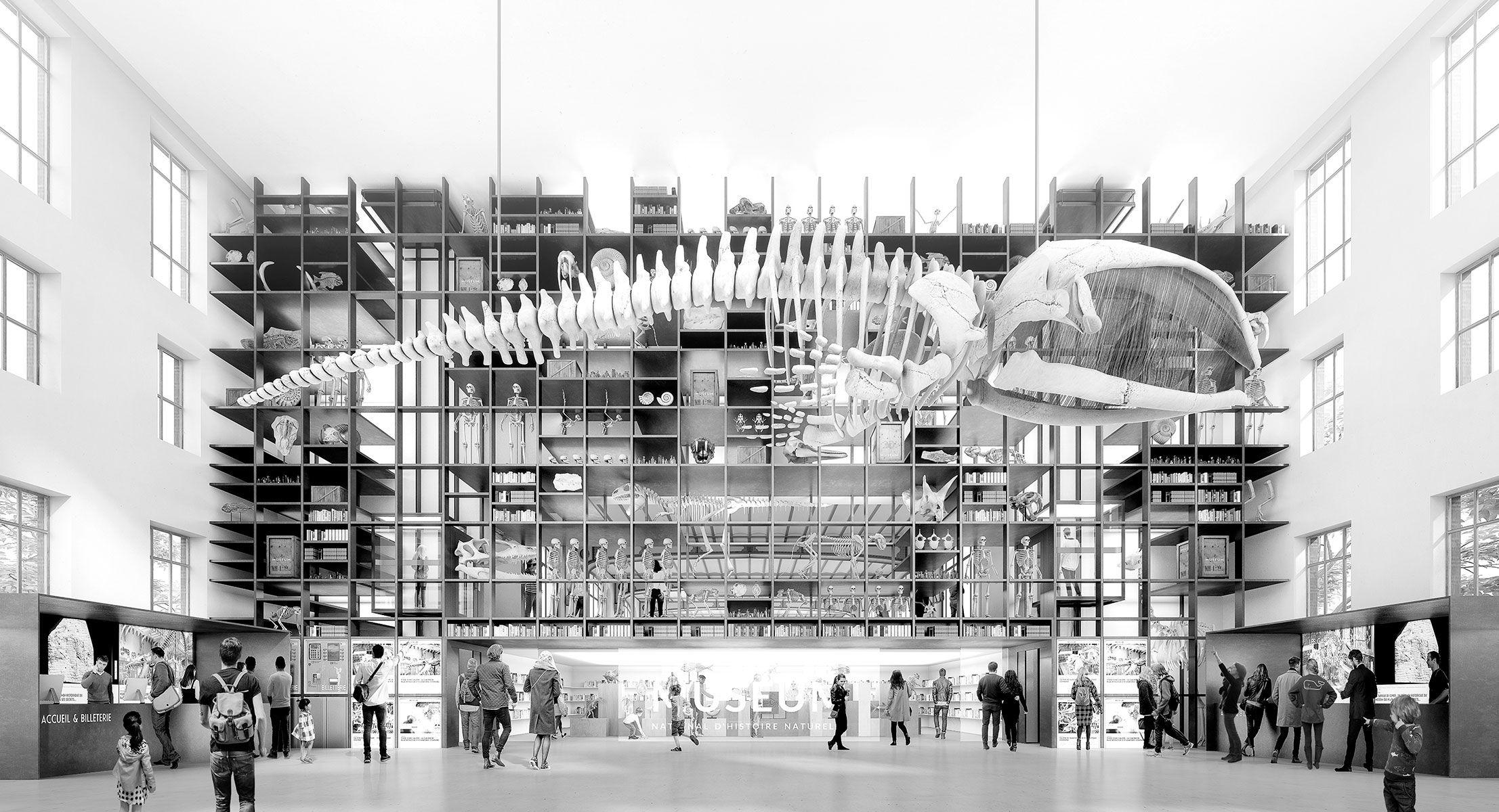 Razzle dazzle bureau d architecture museum national d histoire