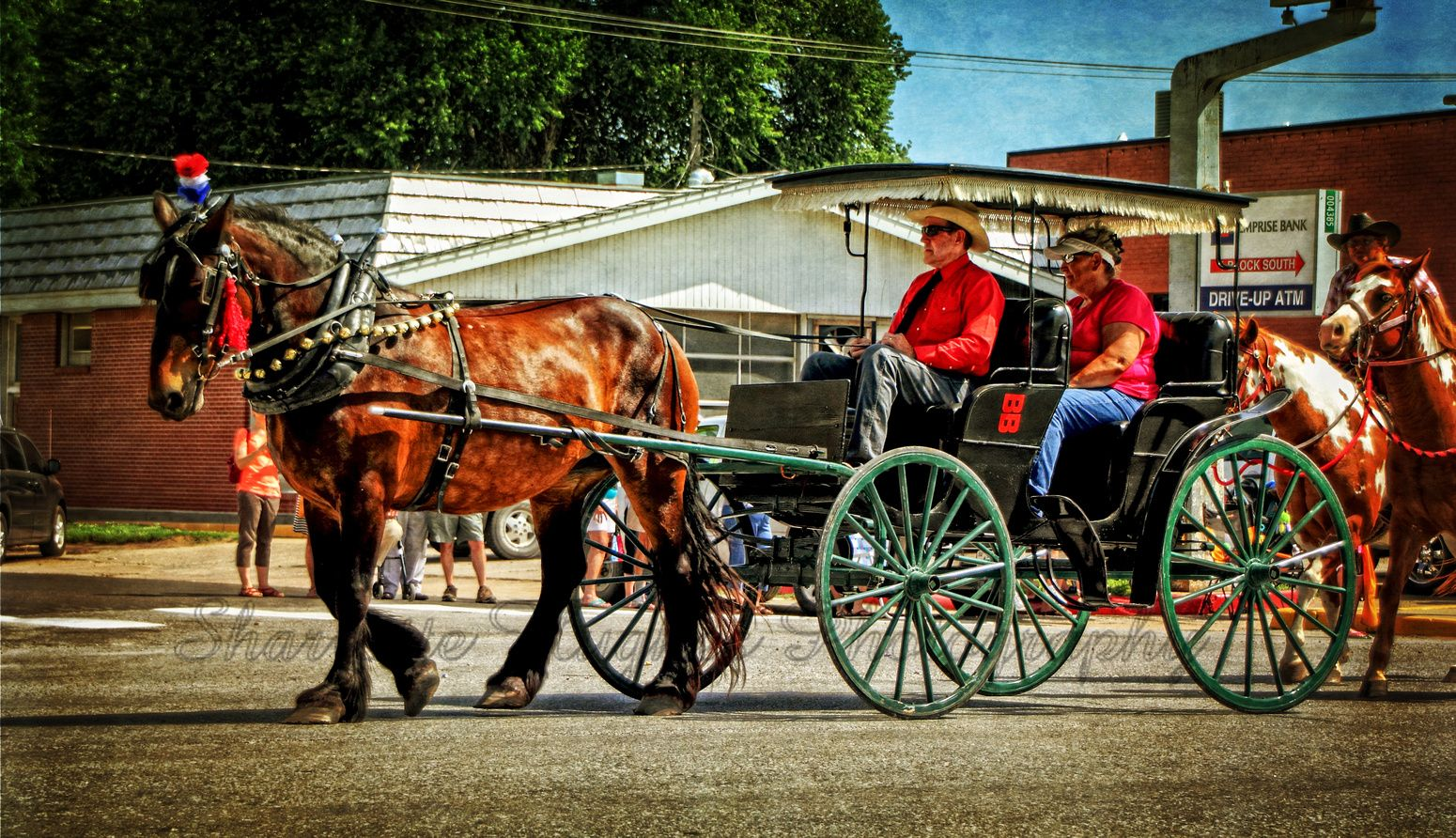 2013 WD Horse Drawn Buggy
