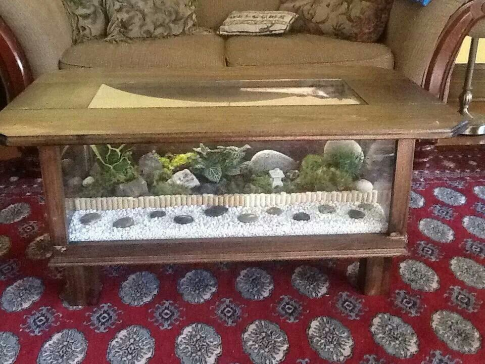 Coffee table terrarium tortoise care pinterest for Coffee table enclosure