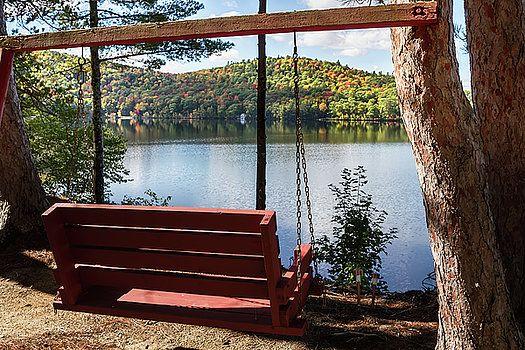 Camp Swing by John Haldane