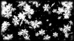 Seamless animated background featuring some black and white snowflakes particles. Great for keying and masking!