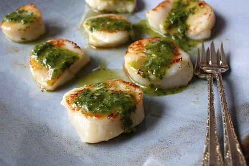 seared scallops with chimichurri.
