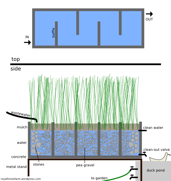 Reed Bed Design Grey Water Recycling Grey Water System Water Collection