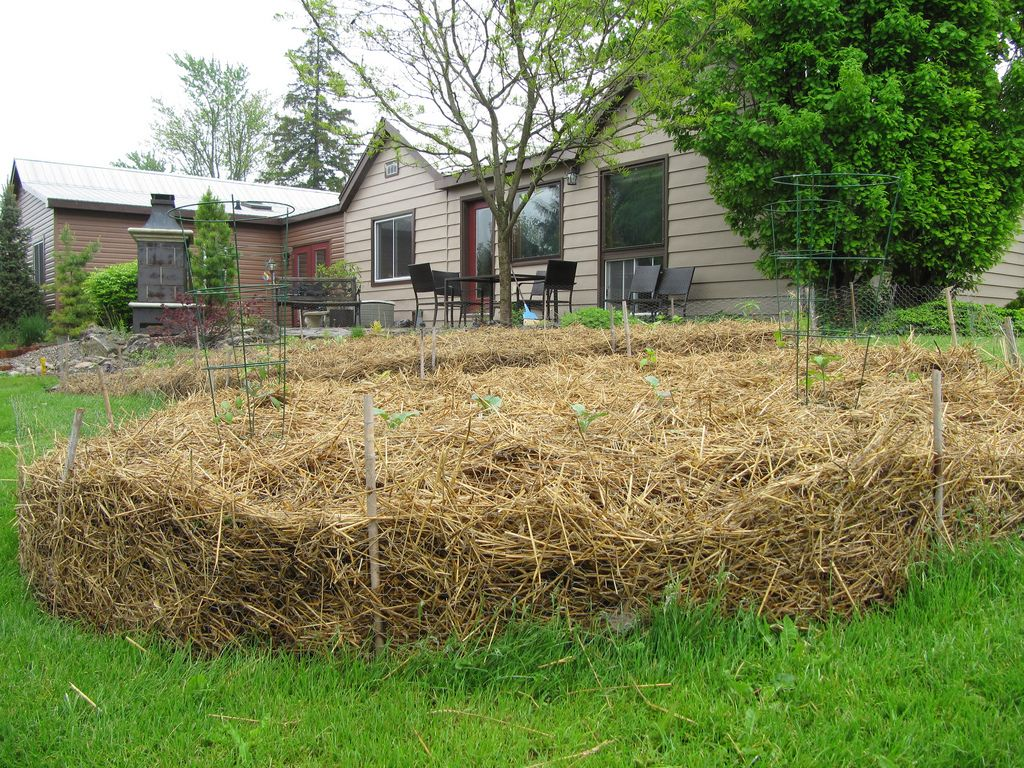 Kitchen Gardeners Sheet Mulching How To Improve Your Soil Without Destroying Your