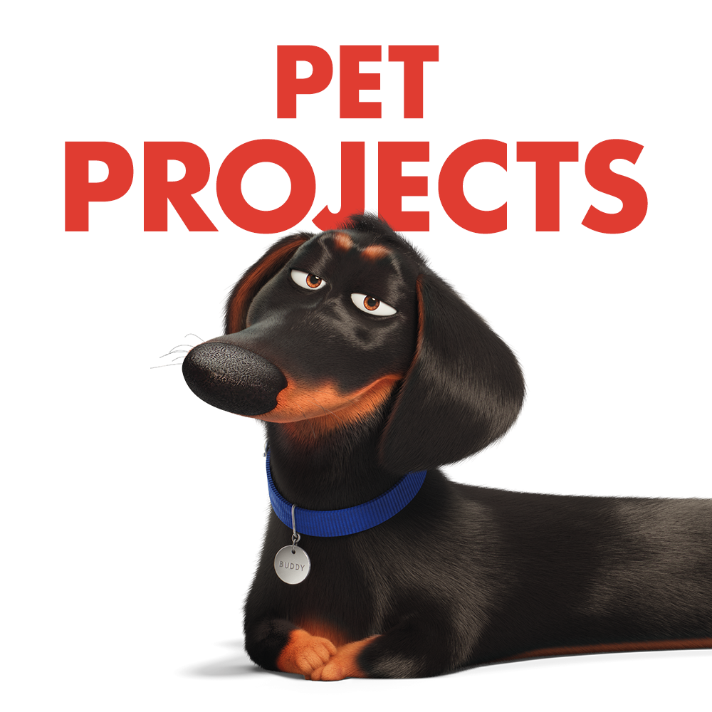 The pets return this summer in the new movie The Secret