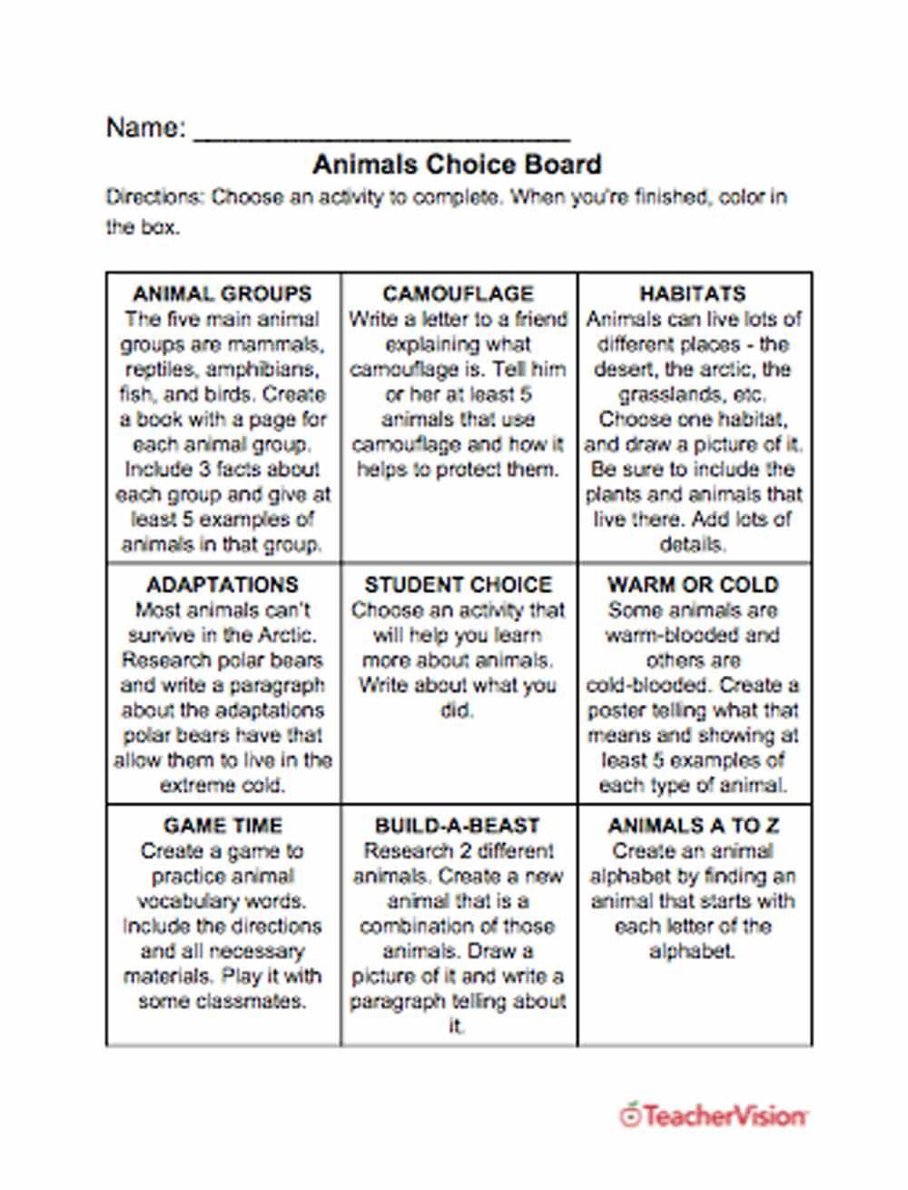 small resolution of Animals Choice Board   Animal adaptations