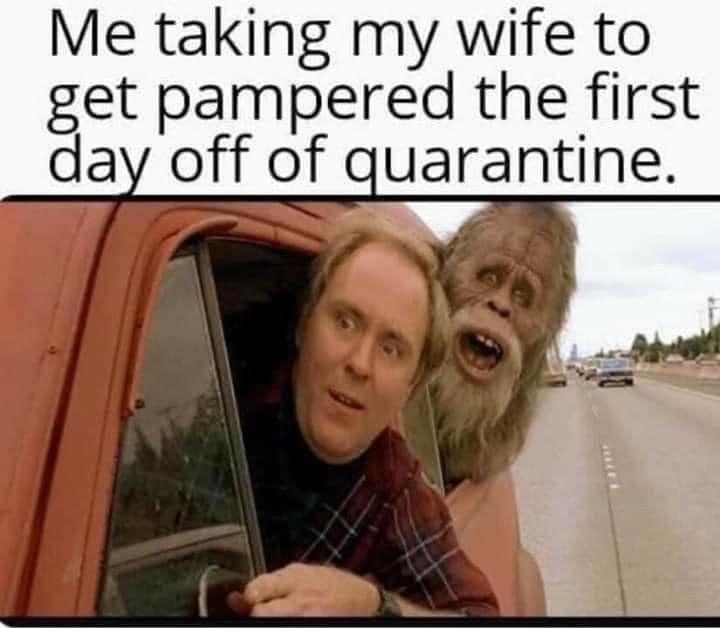 Pin On The Quarantine