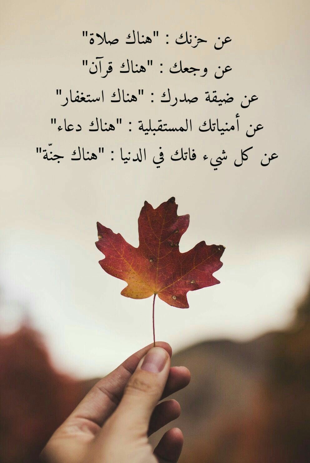 Pin By Lia Said On مواعظ خواطر إسلامية Islamic Quotes Quran Quotes Arabic Quotes With Translation