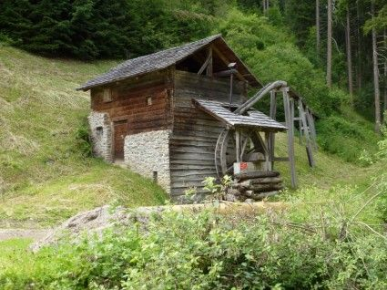 italy_landscape_forest_217450.jpg (425×318)