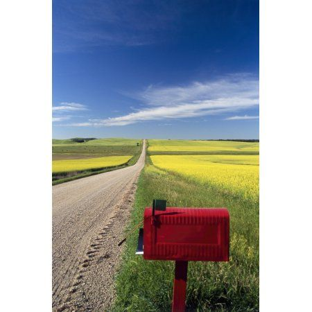Mailbox On Country Road Tiger Hills Manitoba Canvas Art - Dave Reede Design Pics (22 x 34)