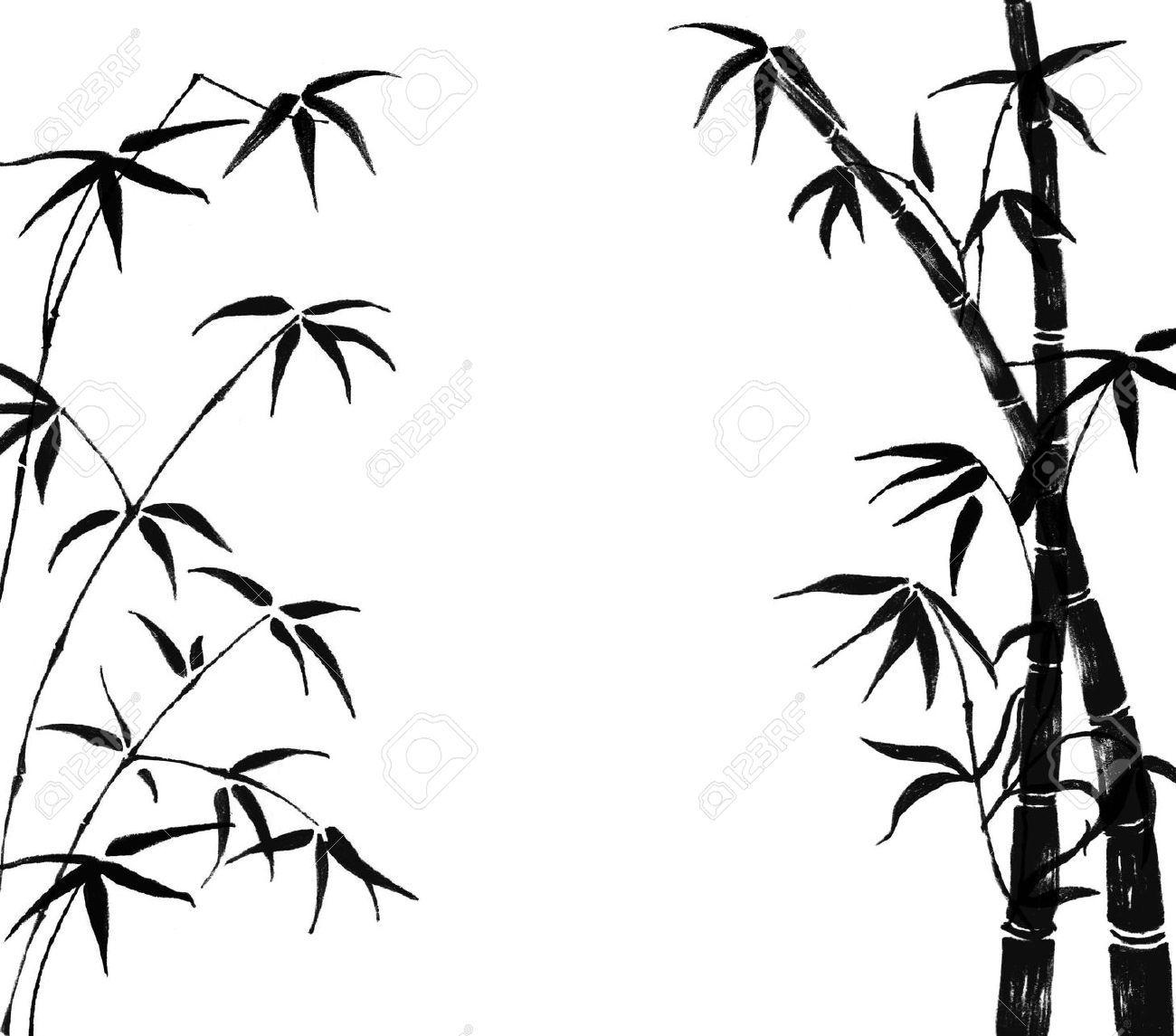 pin by kyle milligan on kaikai coconut bamboo bamboo