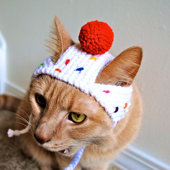 Cupcake Costume For Cats Hand Knit Cat Hat Cat Halloween Costume Pet Costumes Knitted Cat Crochet Cat