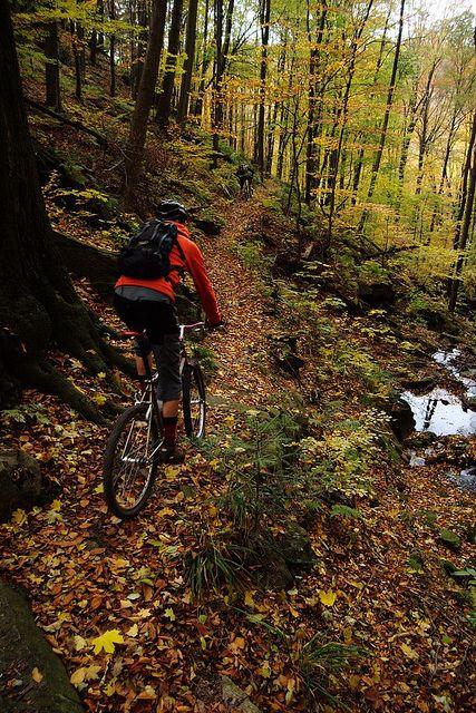 Stone Mountain Bike Trail