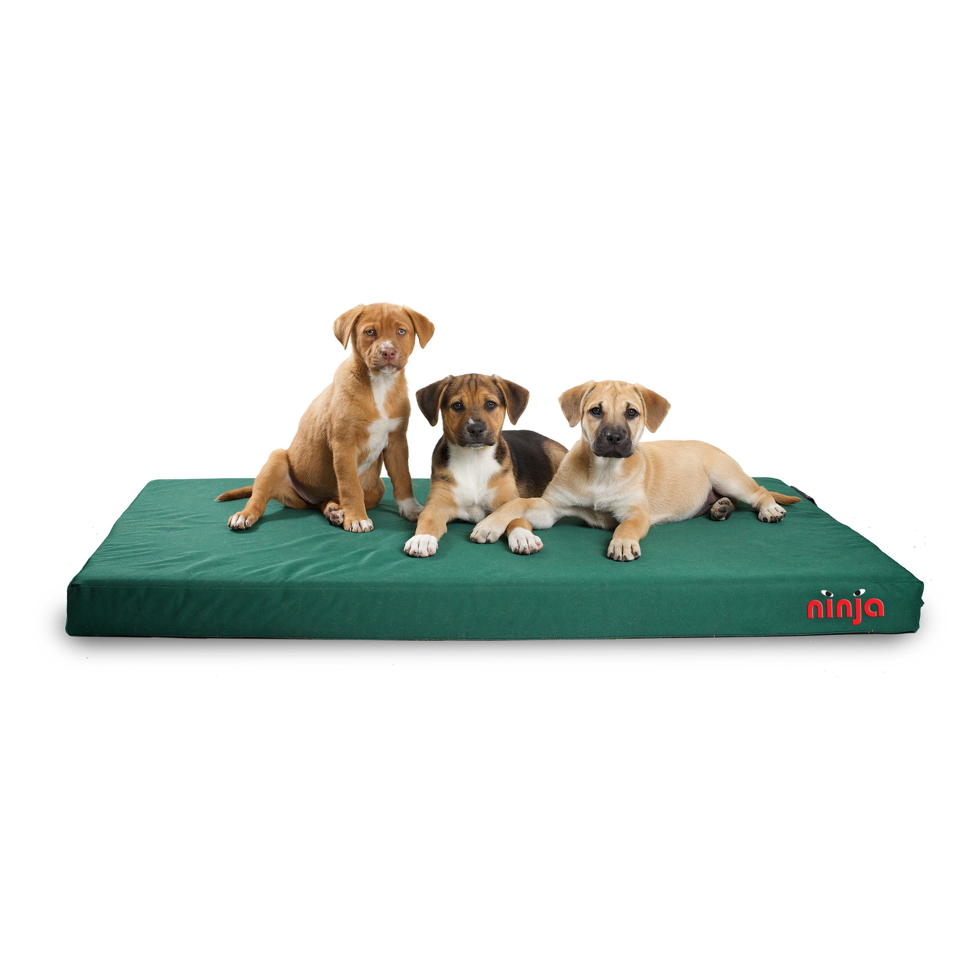Dog Gone Smart Ninja Bed from Dogs, Pet