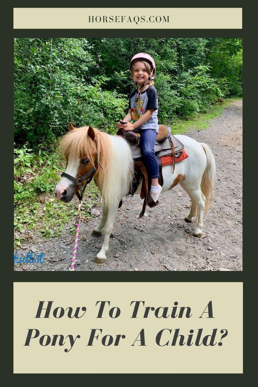 A Tiny Barn For My Tiny Horse Www Shedcraft Com Small Barns Mini Horse Barn Barn Construction