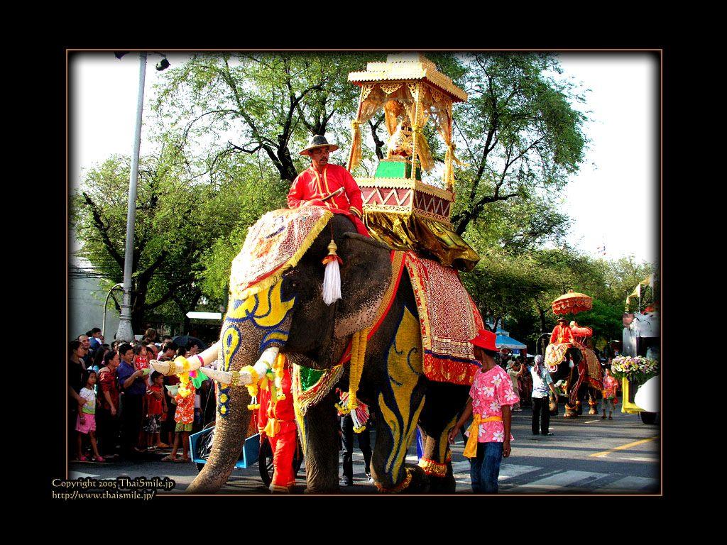 Elephant a symbol of thailand thailand bangkok pinterest elephant a symbol of thailand biocorpaavc Gallery