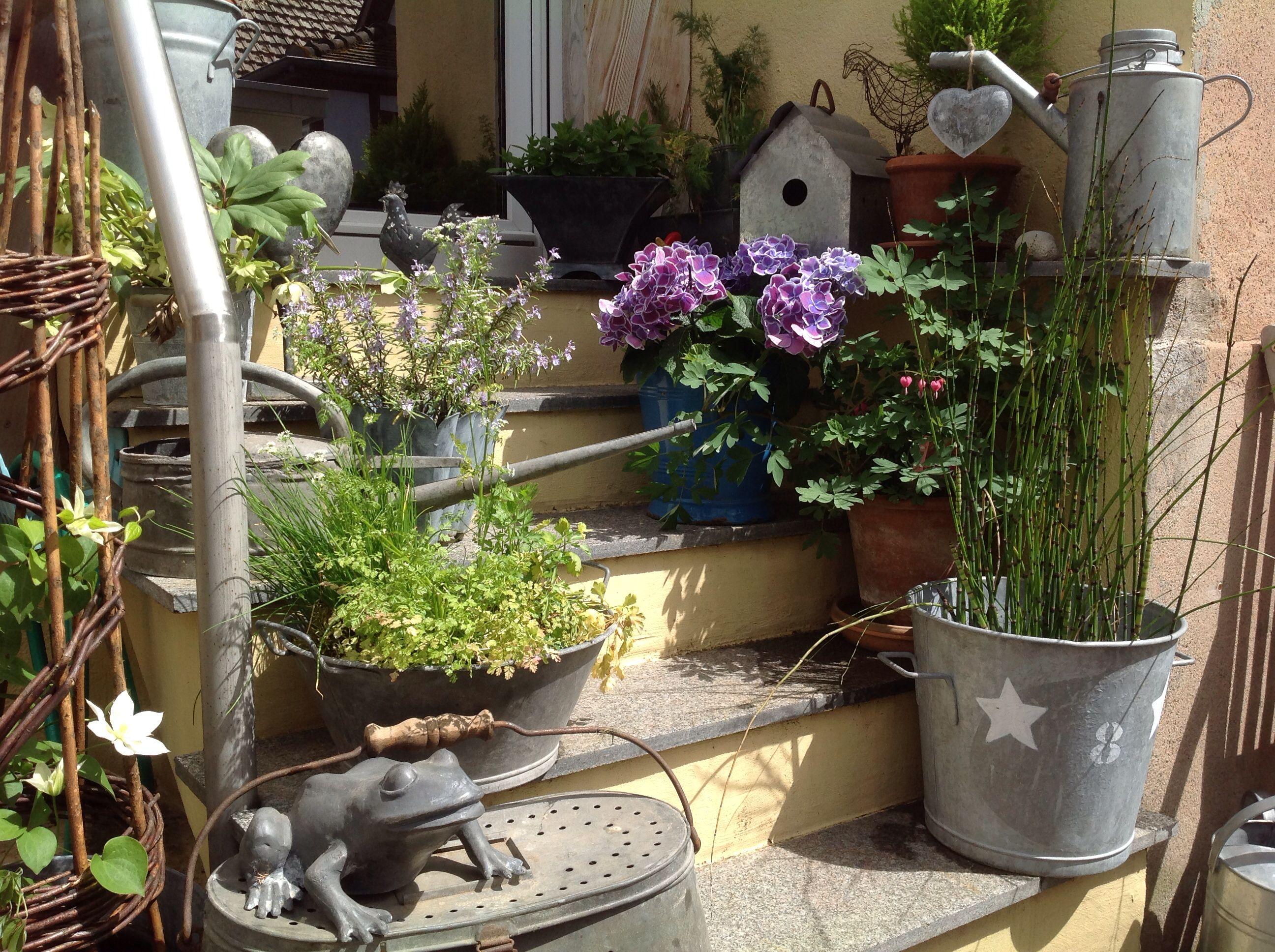 Zincs au jardin jardim vertical jardins idee deco jardin d co jardin - Baraque de jardin ...