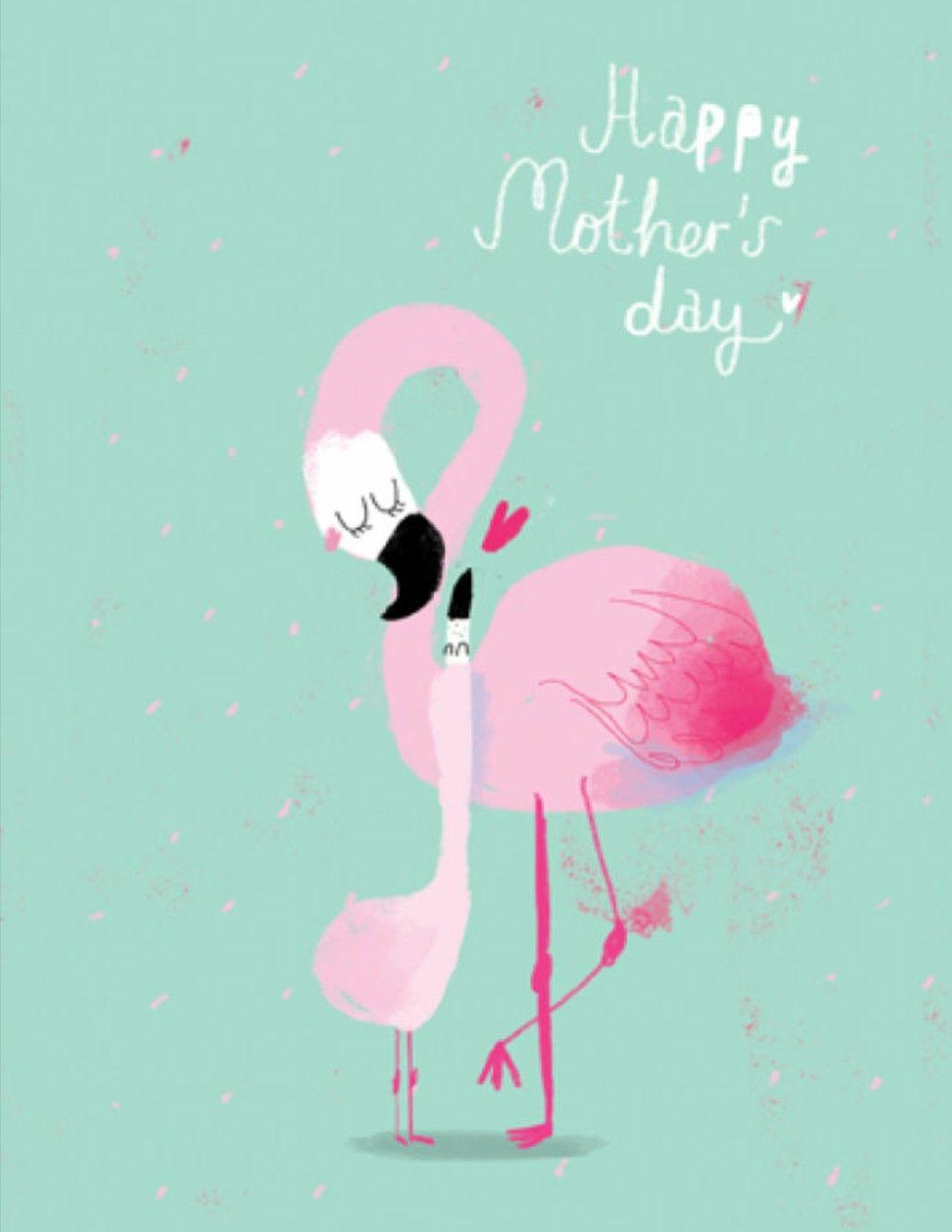 Pin de Rachelle Taylor en #PinkFlamingos | Pinterest | La madre ...