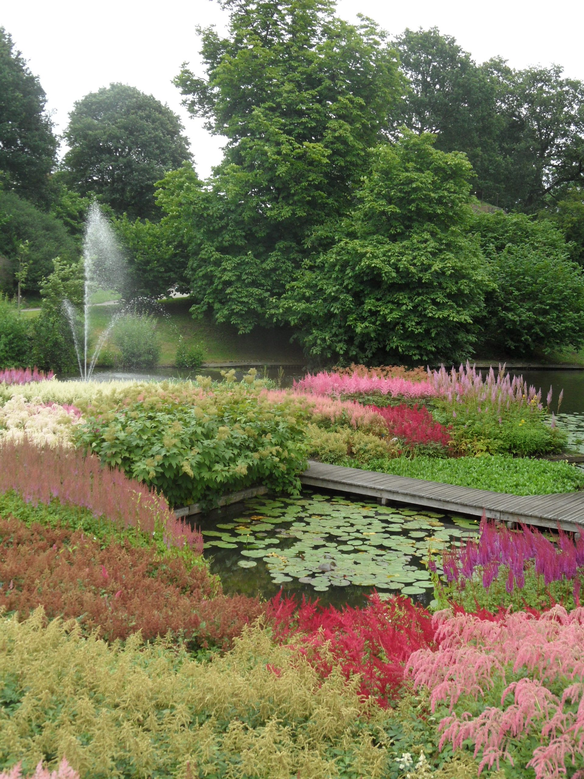 Botanic Garden Utrecht Holland
