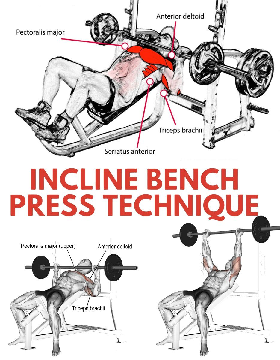 Barbell Incline Bench Press Chest Workout For Men Incline Bench Bench Press