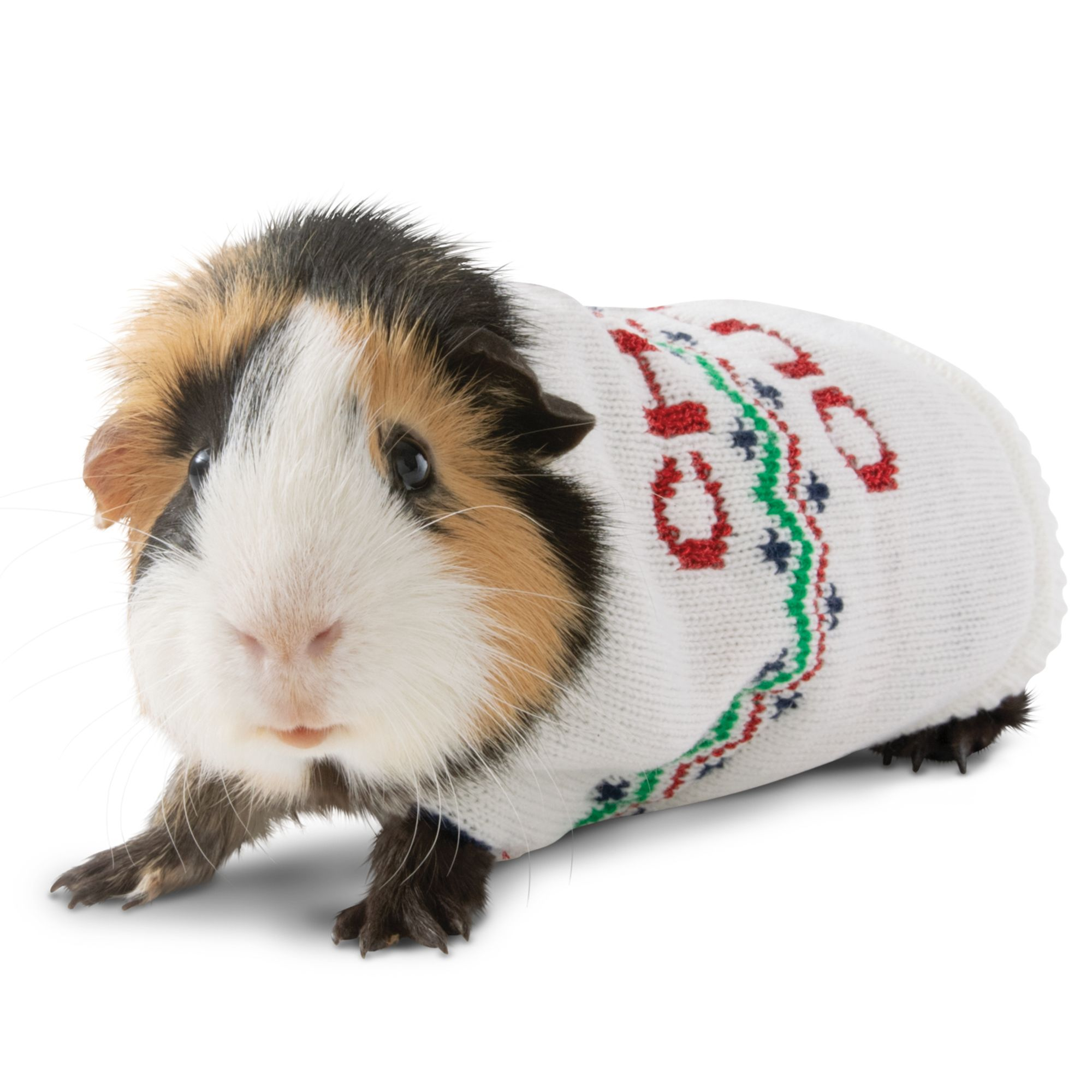 "Merry and Bright, Holiday""Chill Out"" Sweater Small Pet"