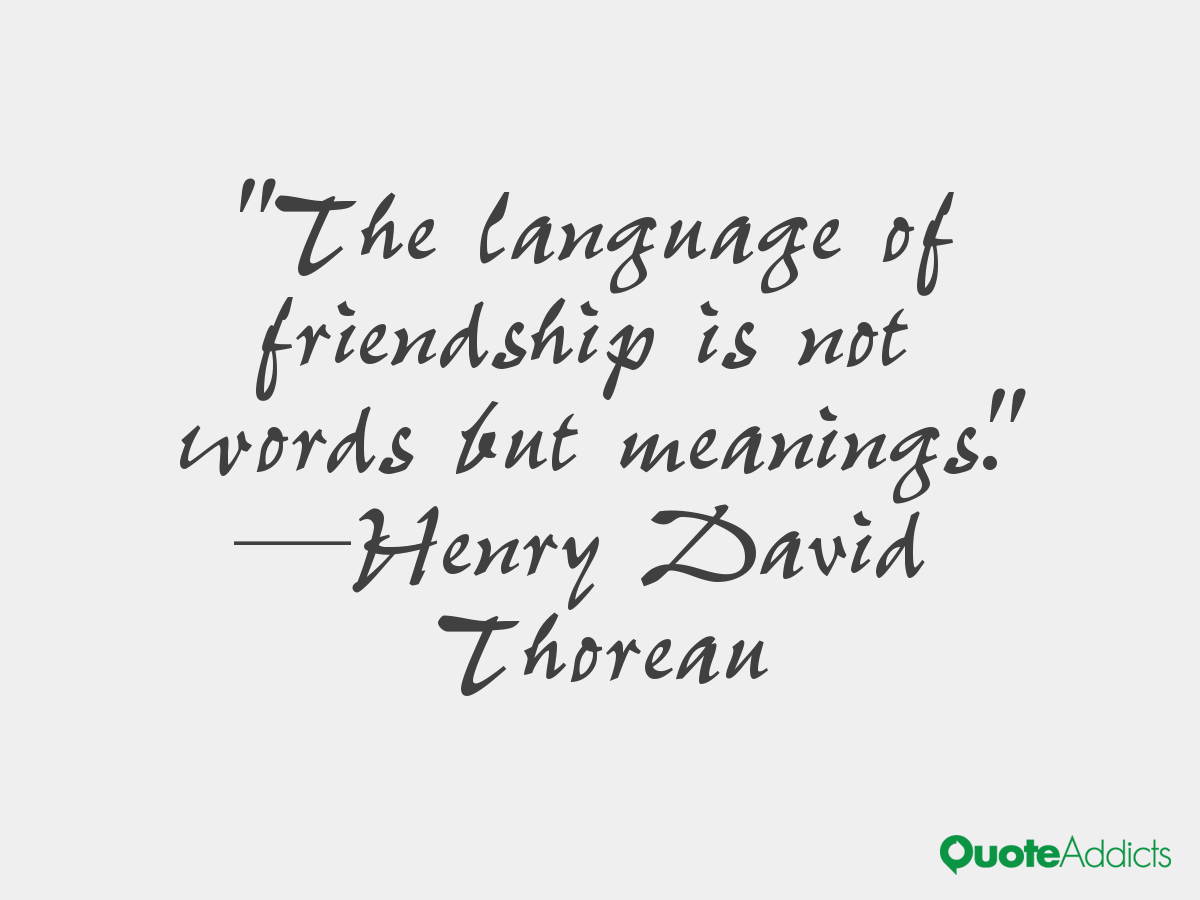 Quotes About Friendship Funny Top 10 Funny Friendship Quotes For Your Best Friends  Funny