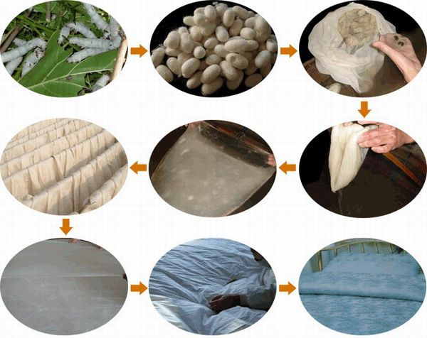 the process of making silk The secret of silk by cindy grigg for at least four thousand years, people have treasured silk chinese legends say that  in the silk-making process name.