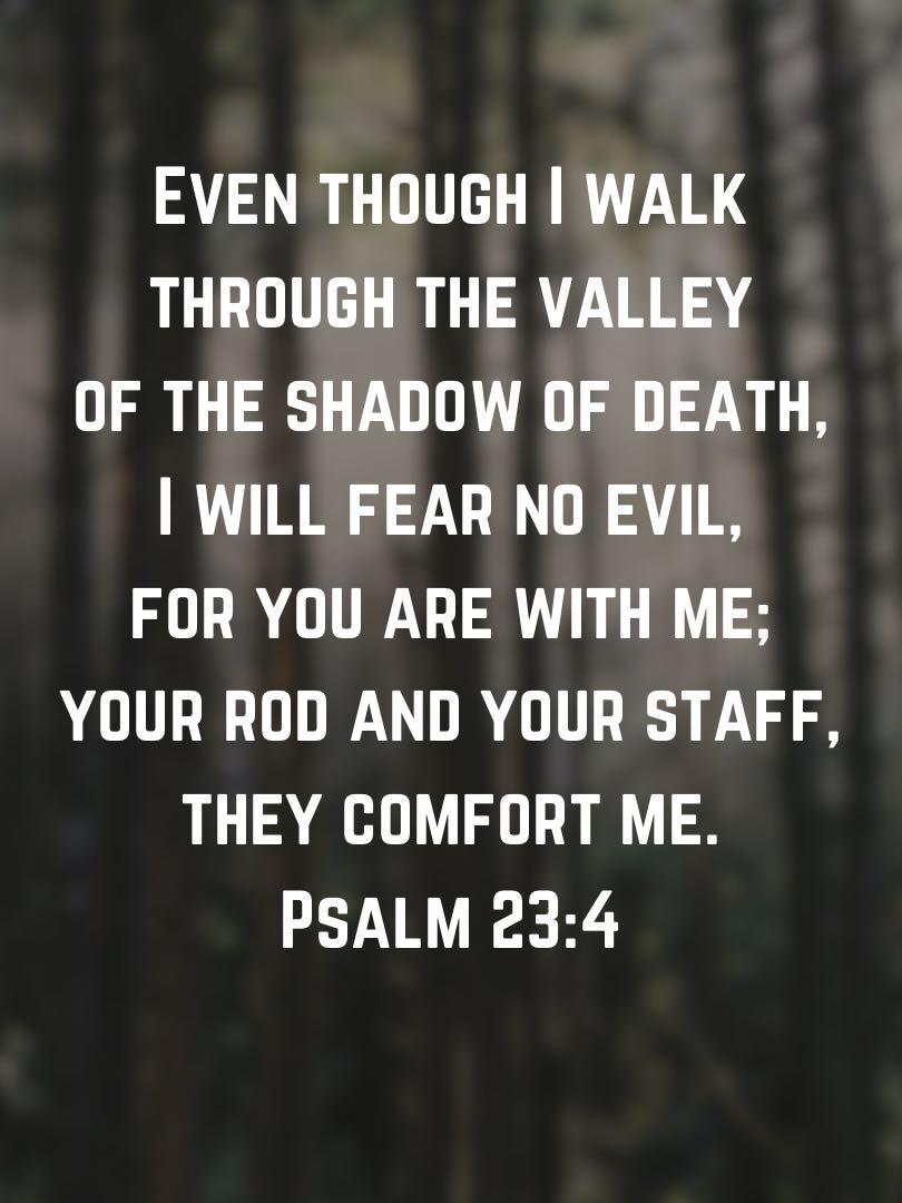 I Will Fear No Evil Psalm 23 4 Esv Psalm23 23rdpsalm Psalms
