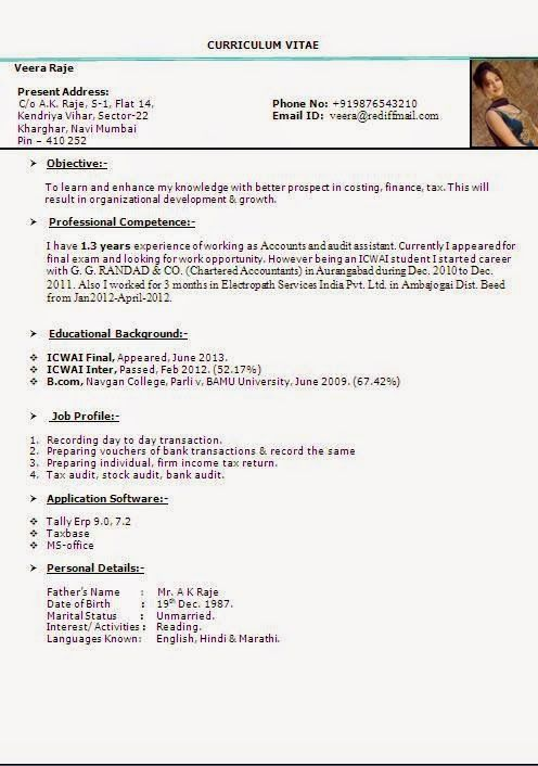 cv resume format Sample Template Example ofExcellent Curriculum - example of cv resume