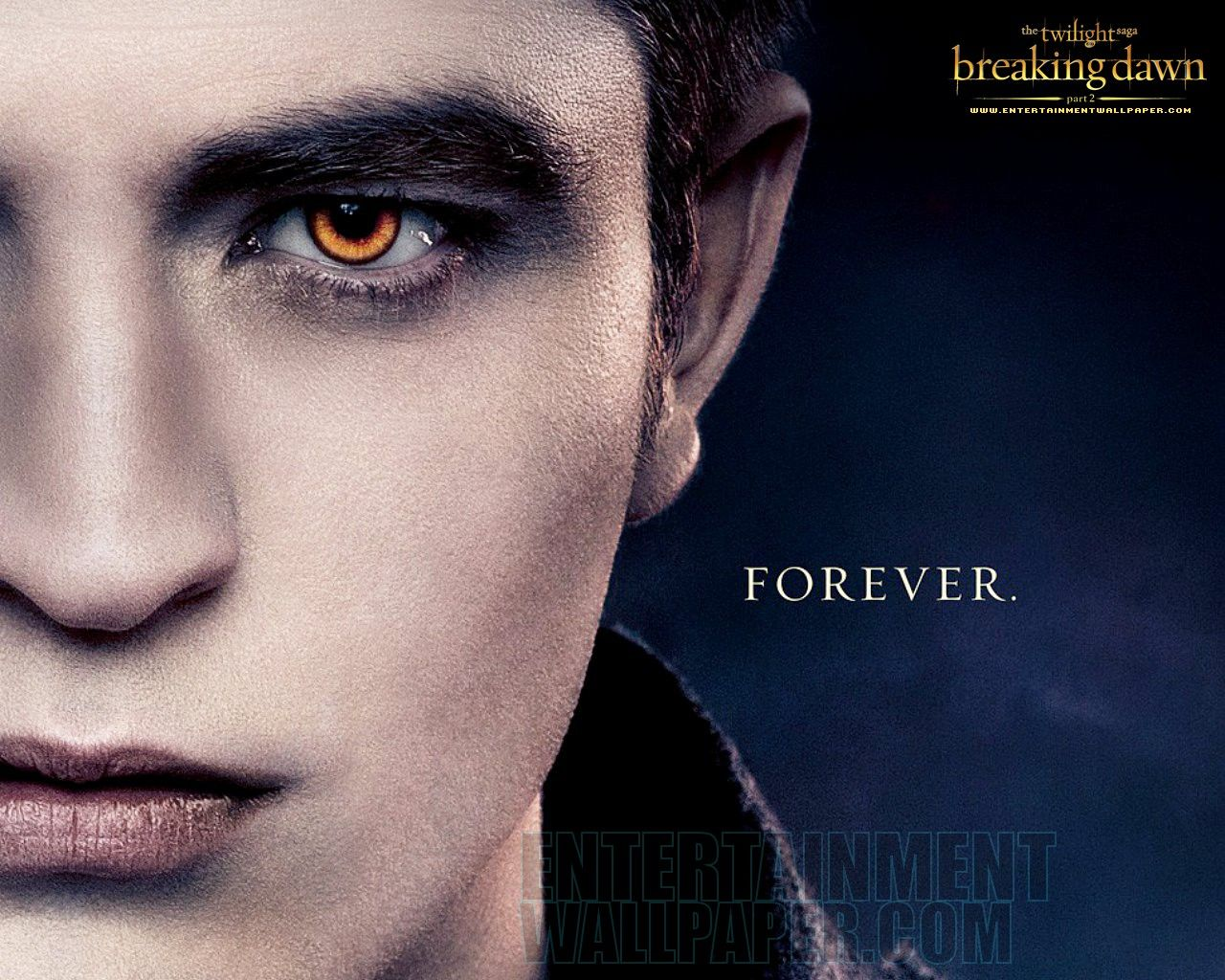 Image cullen family breaking dawn wallpaper twilight series - Find This Pin And More On Twilight Forever 3 Twilight Breaking Dawn Part 2 Edward Hd Desktop Wallpaper