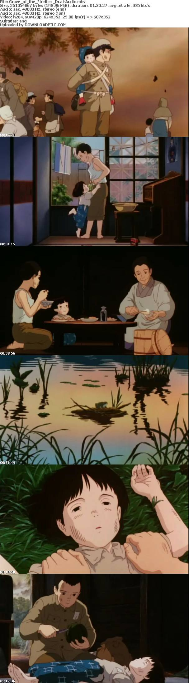 Grave of the Fireflies Grave of the fireflies, Ghibli