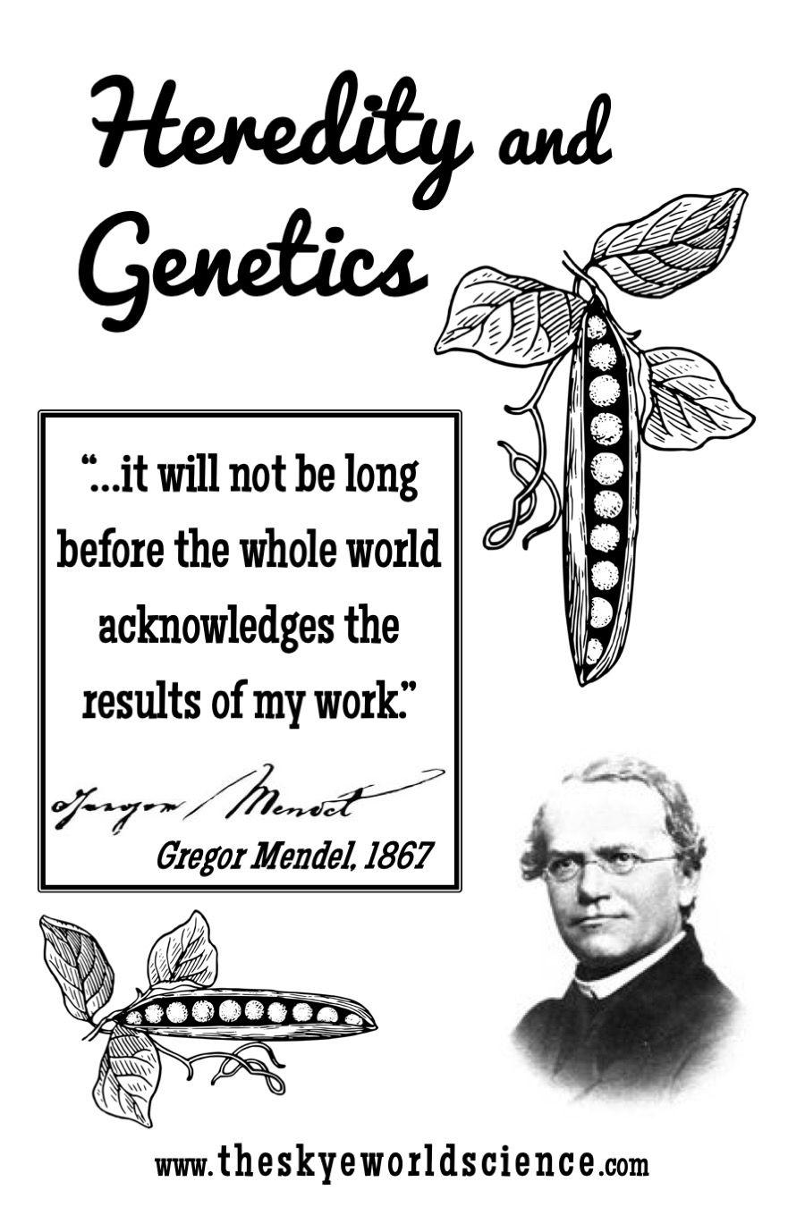 Classical Genetics Activities Persuasive Writing Prompts Genetics Lesson Teaching Biology Activities